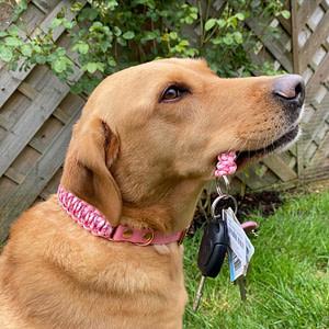 cherry holding pink keys