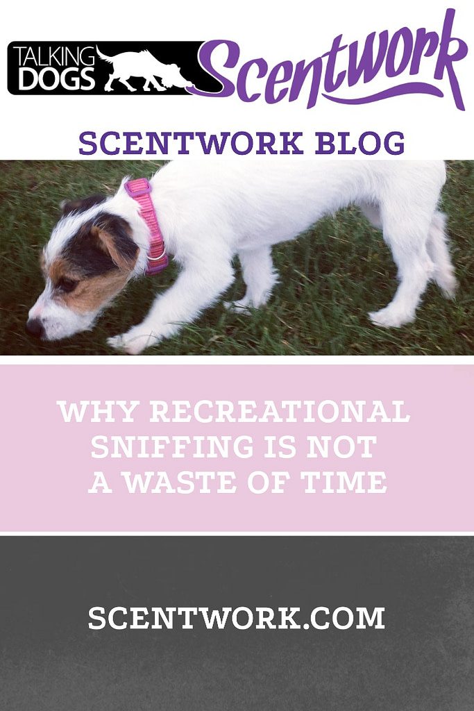 RECREational sniffing
