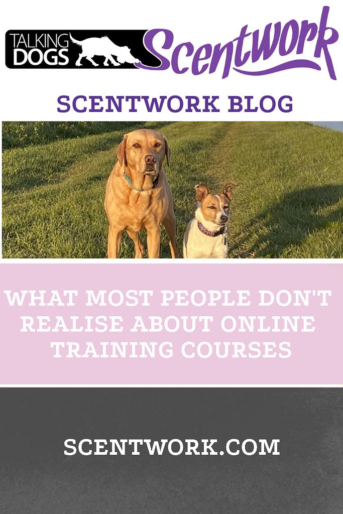 online training blog