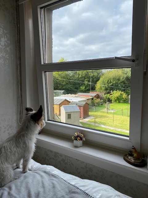 Ettie looking out of flat window