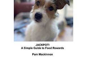 Food rewards guide cover