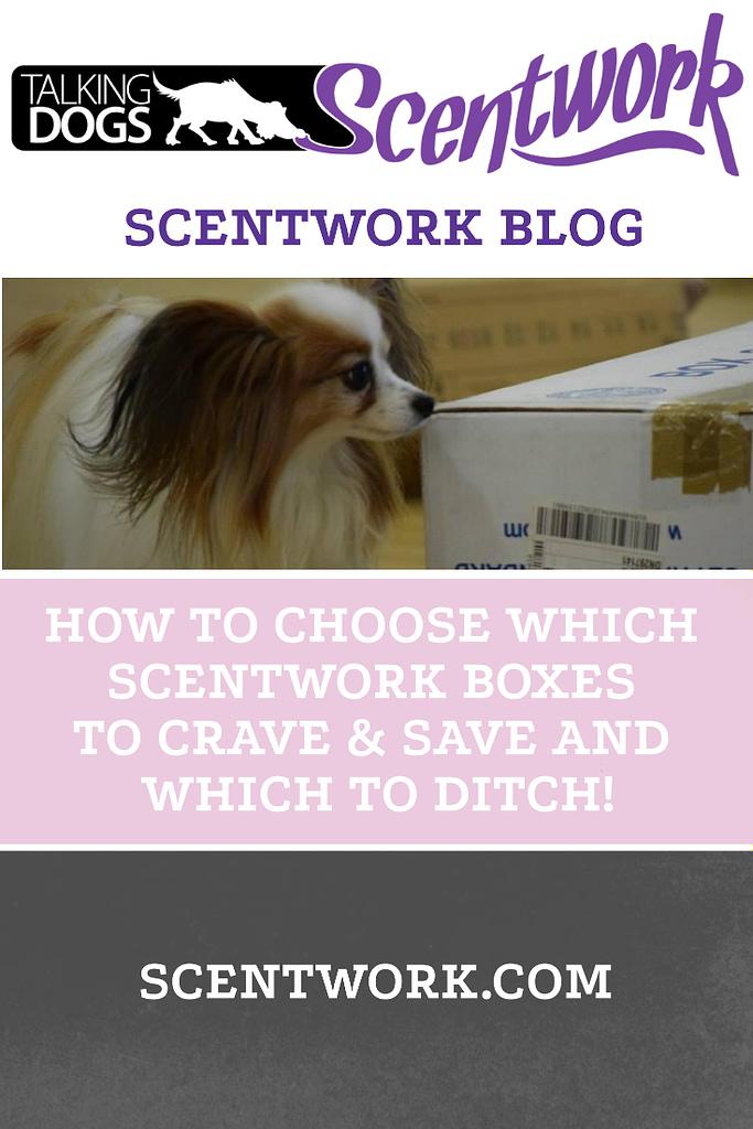 boxes blog