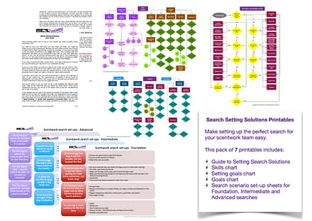 search setting solutions printables