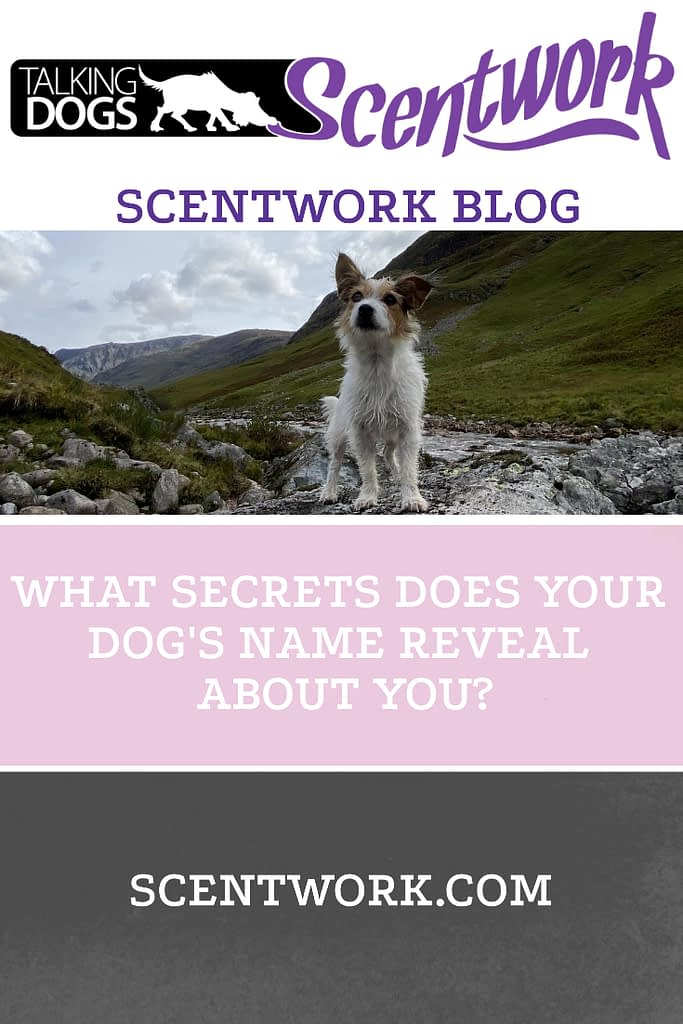 secret name blog