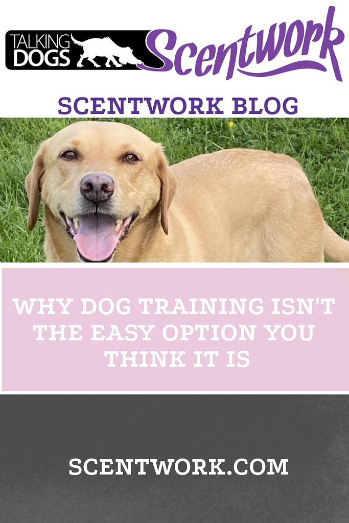 dog training isn't the easy option blog