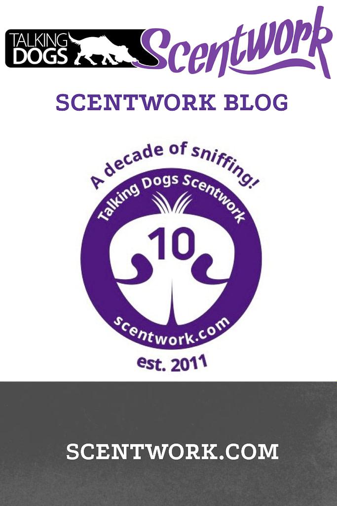 10 years blog